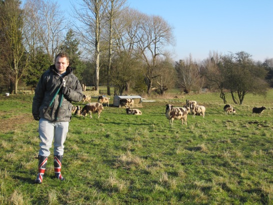 Darren with the sheep at the Humphries' smallholding.